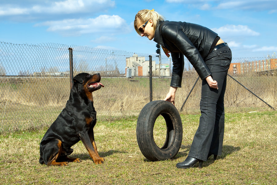Blonde-Young-Woman-With-Rottweiler