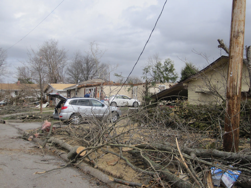 10. Another Dog Survives Illinois Tornado