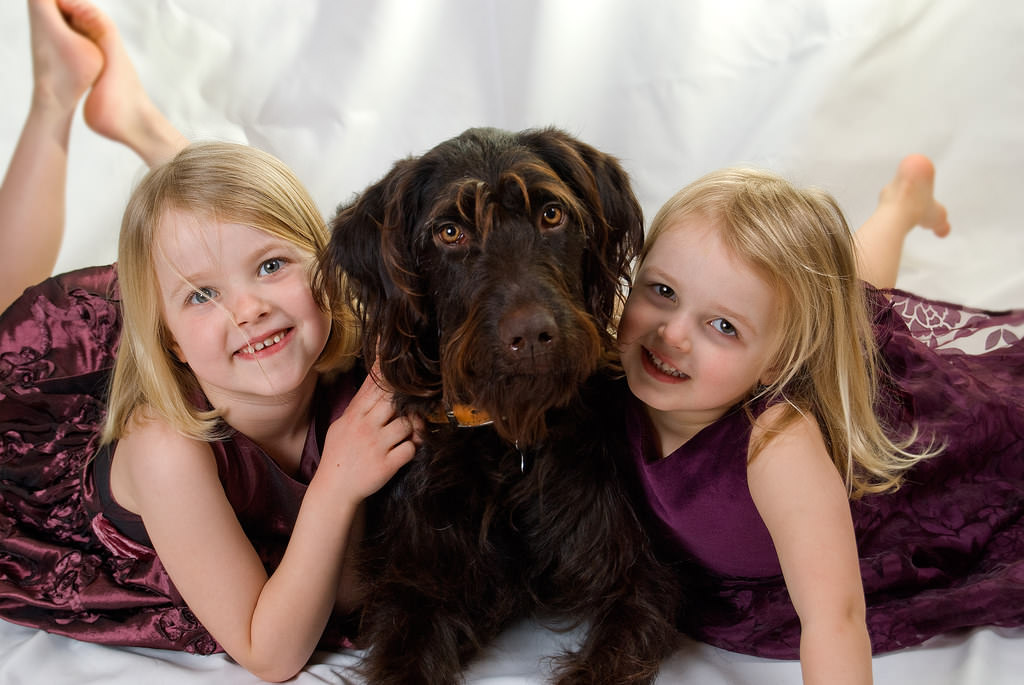 Do Not Leave a Young Child Unattended with a Dog of Any Size