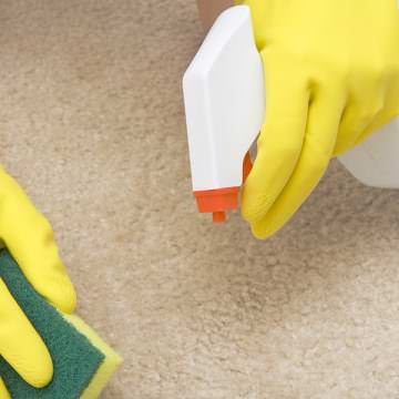 Cleaning Stains and Removing Odors